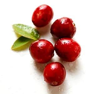 2 cranberries