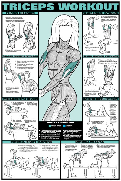 0 workout triceps