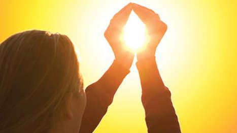 5 sterke botten zonlicht